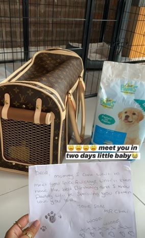 Tommy surprised Molly with the 21st ultimate gift - a puppy