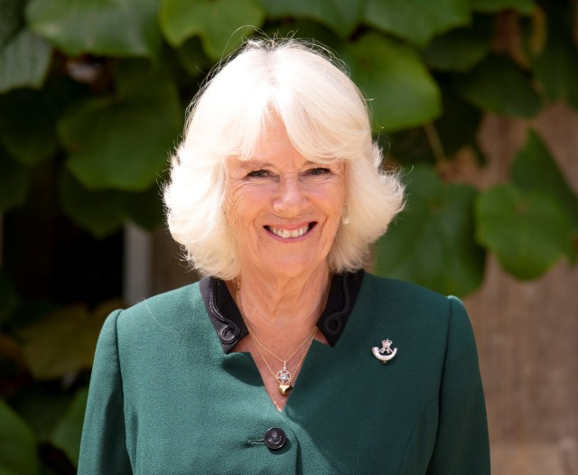Camilla was recognised as the new Colonel-in-Chief this afternoon