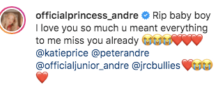 The princess wrote a heartbreaking legend