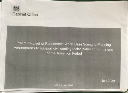 The leaked document warns what may happen in a perfect storm of a winter second wave of Covid-19 coinciding with a No Deal Brexit