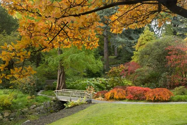 The Bodnant Garden in Conwy was established in 1874 by a Victorian scientist and politician