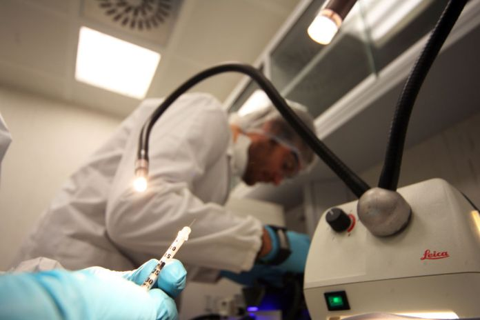 Researchers work at IRBM laboratories in Italy, which have partnered with the University of Oxford (file photo)