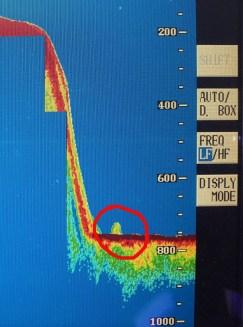 Un monstre du Loch Ness « repéré sur sonar » alors qu'une forme mystérieuse détectée à 600 pieds sous la surface