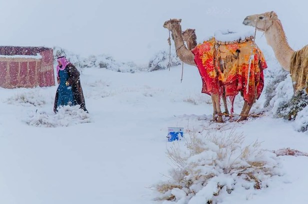 Tabuk is one of the coldest regions in Saudi Arabia