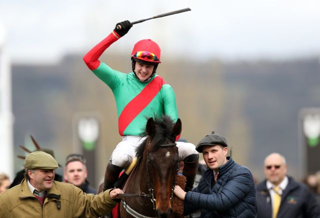 The Conditional won at last year's Cheltenham Festival