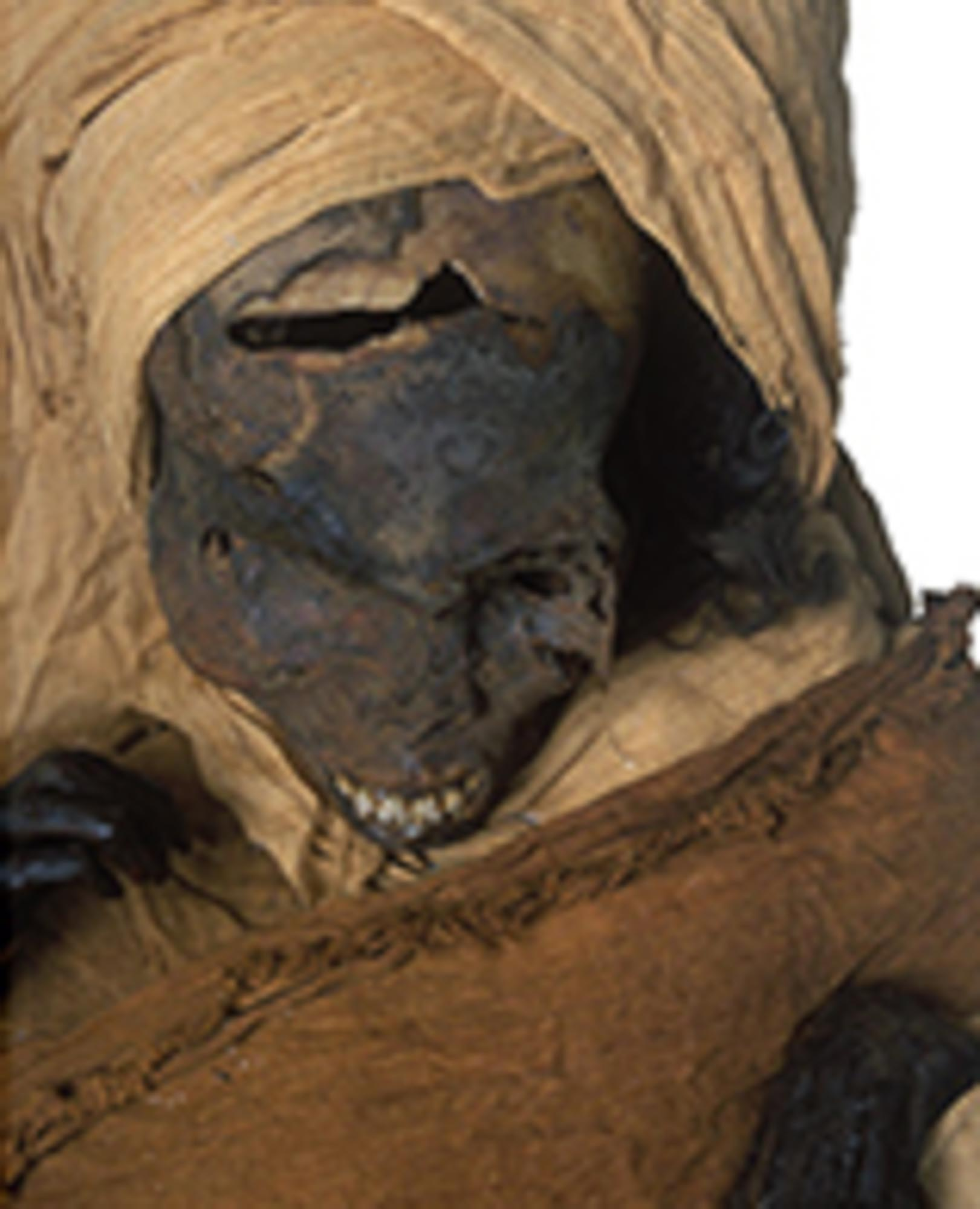 The mummy's tortured skull can be seen here
