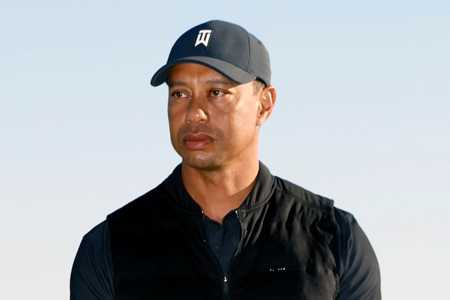 Tiger Woods was involved in a horror car crash