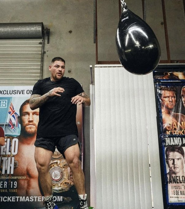 Andy Ruiz Jr is looking in great shape ahead of his comeback bout against Chris Arreola