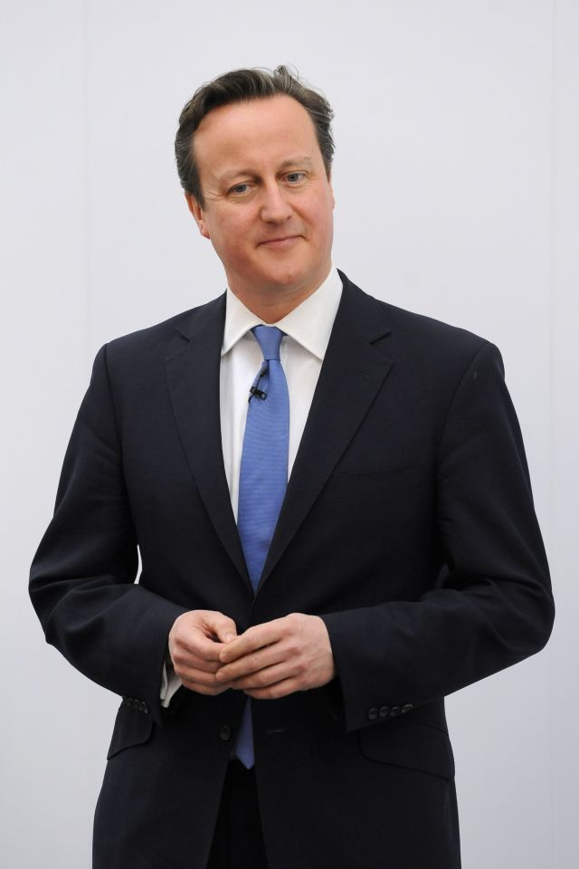 David Cameron said he would often find time to make a cheese sandwich alone just to get 'a few moments of peace'