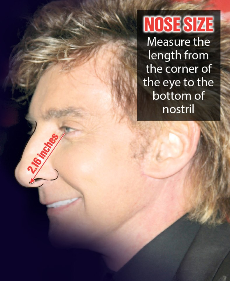 Men with big noses, like singer Barry Manilow, pictured, do have larger willies, scientists say
