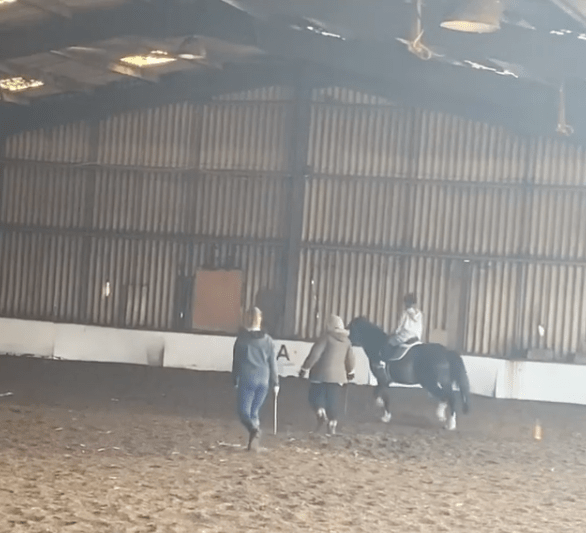 Billy was trying his first canter at riding school when the accident happened