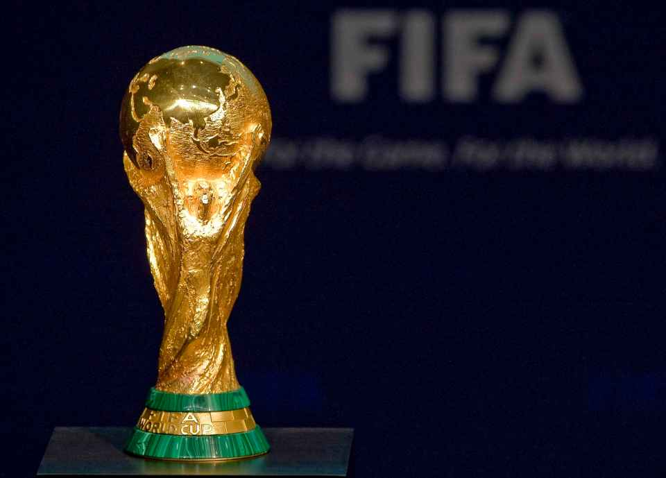 He and Fifa are looking to stage the revamped World Cup tournament every two years