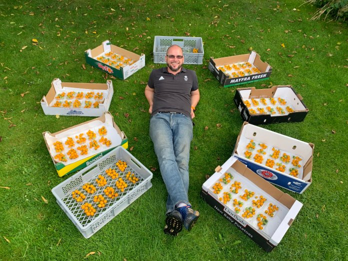 Douglas says his tomato crop tastes 'very good' as well as record-breaking