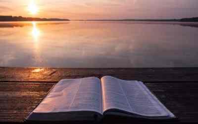 Encounter Jesus in The Chosen