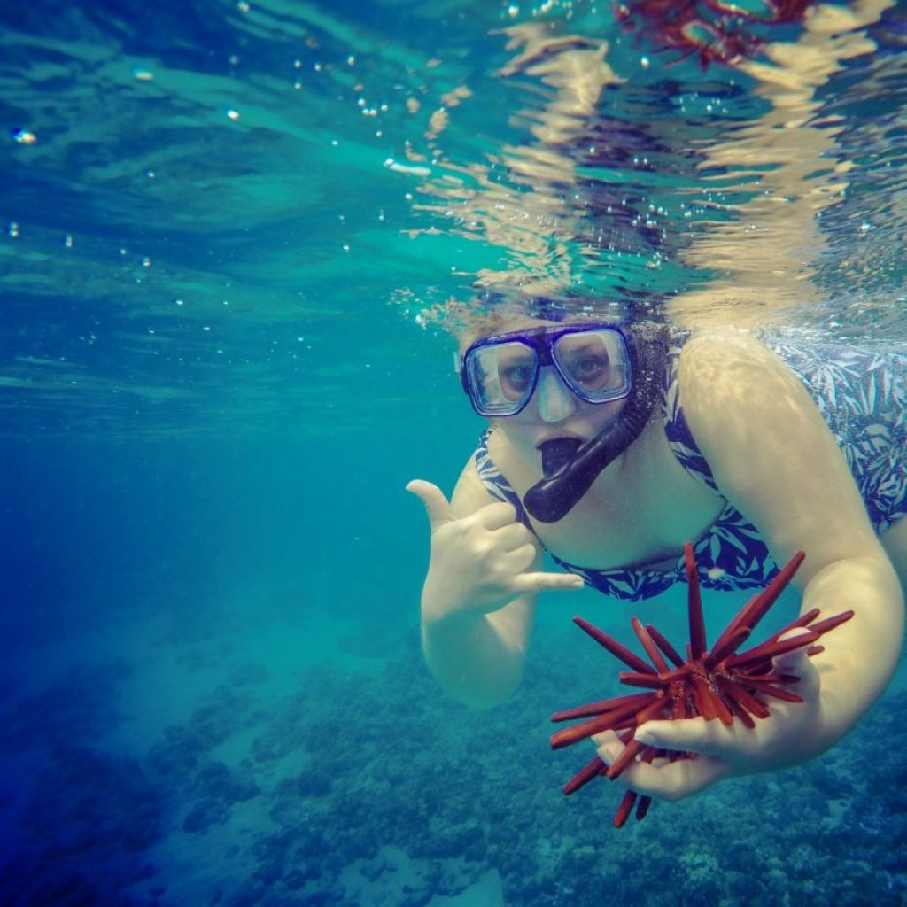The Sunshine Suitcase Snorkeling in Hawaii