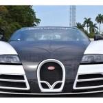 bugatti-veyron-mansory-linea-vivere-for-sale-1
