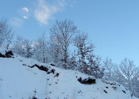 Blue snow picture