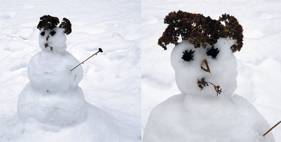 Snowman with broccoli hair
