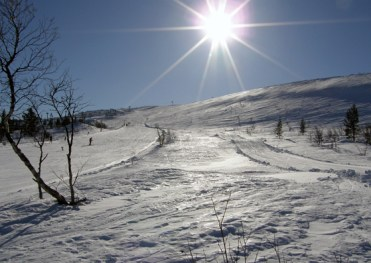 Sun on meringue snow - the ski slope
