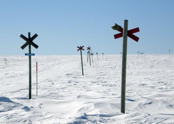 Vinterled - midday