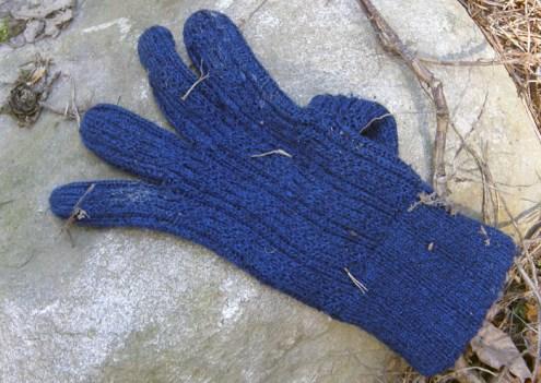 Blue woolen glove, Hisingsparken, Gothenburg, Sweden 26 Mar '11 14.07