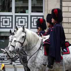 Remembrance Day 2017: Trumpeters and their horses
