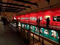 William Klein exhibition 12