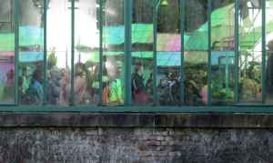 Royal tourists reflected in royal greenhouse glass