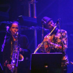 Backing musicians