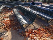 Dry leaves and sunny benches