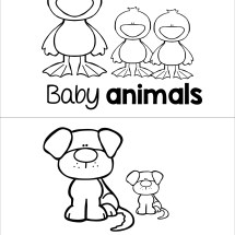 Baby Animals Read and Color.001