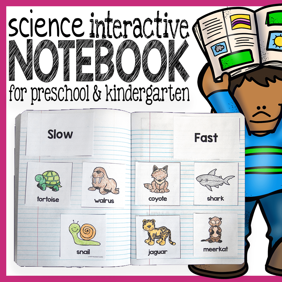 Science Interactive Notebook For Preschool And