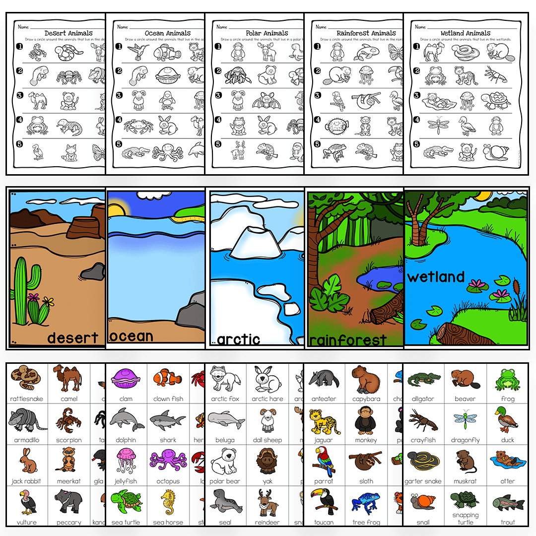 hight resolution of Animal Habitats Science Activity and Worksheets – The Super Teacher
