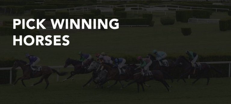 How to Pick a Winning Horse in 2020 - 3 Simple & Effective ...