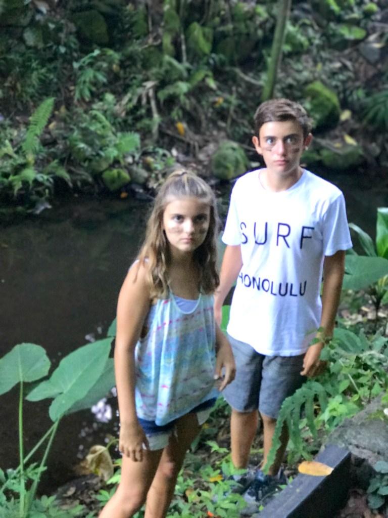 My Wild Kids