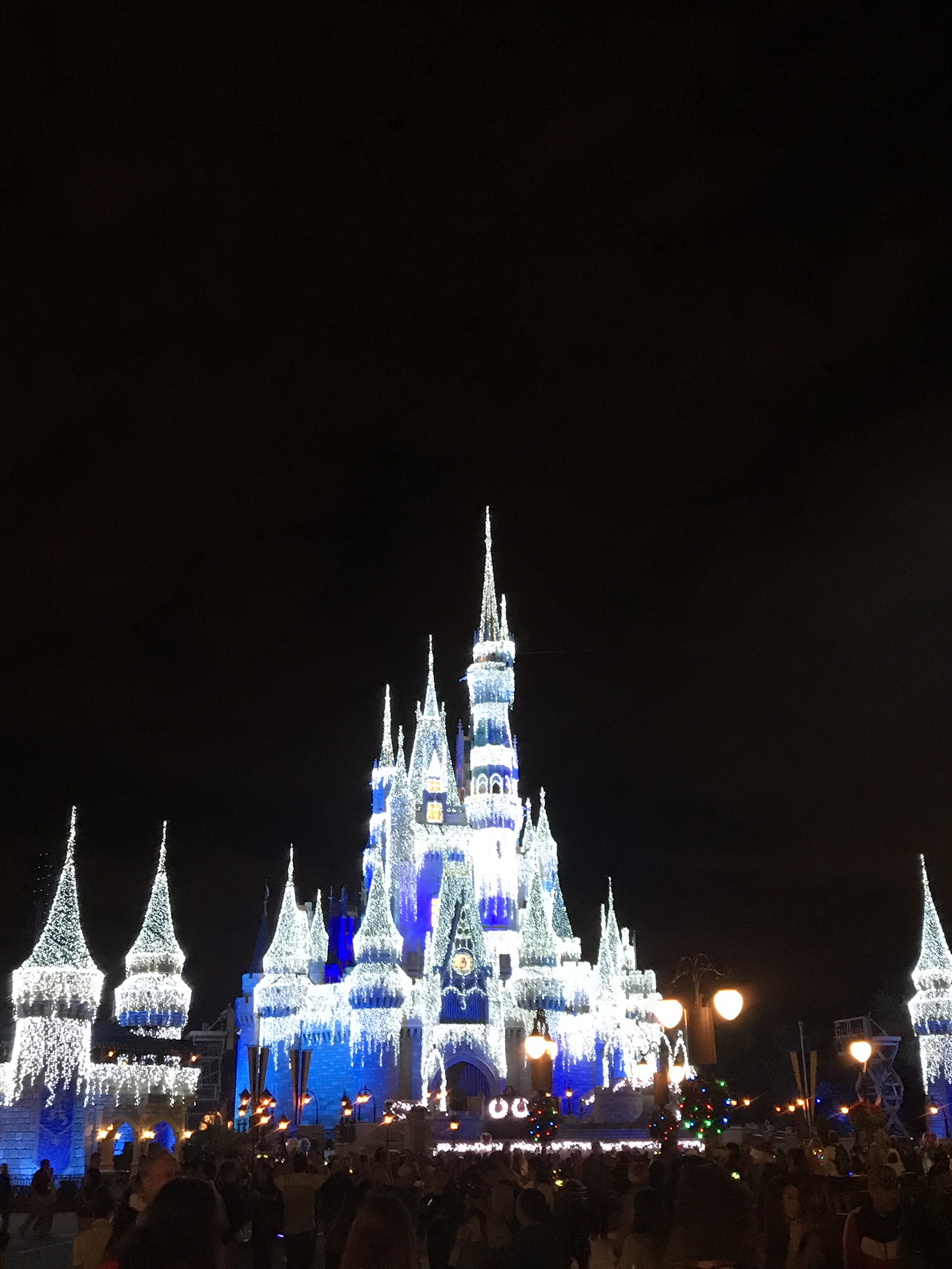 Cinderella's castle decorated for Christmas with the night sky background