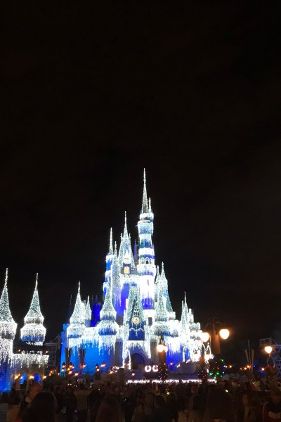 Magic Kingdom During the Holidays