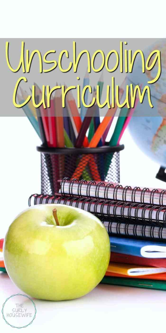 What does an unschooling curriculum look like? A free flowing schedule that keeps kids occupied with minimal planning. Click here to find out!
