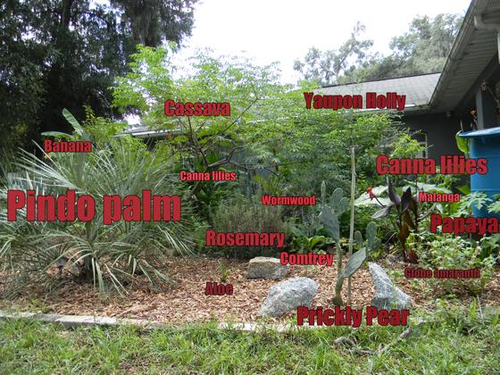 edible landscaping survival
