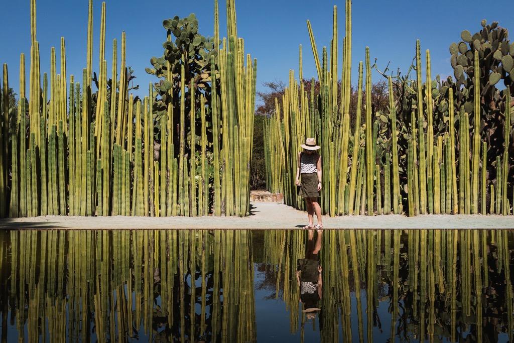 Jardin Etnobotanico, Oaxaca, Mexico