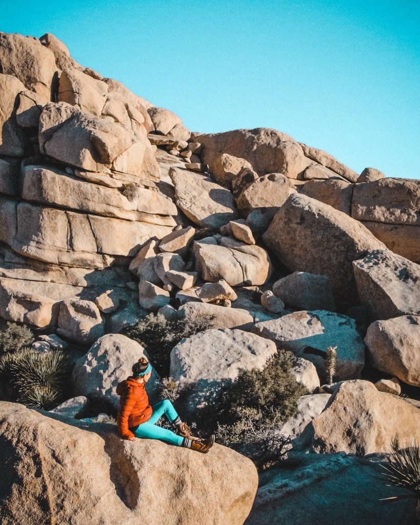 Warming up in the morning sun at Joshua Tree National Park