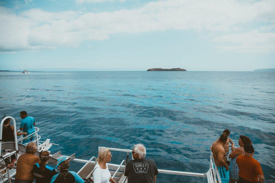 Maui Whale Watching Tour with Pride of Maui