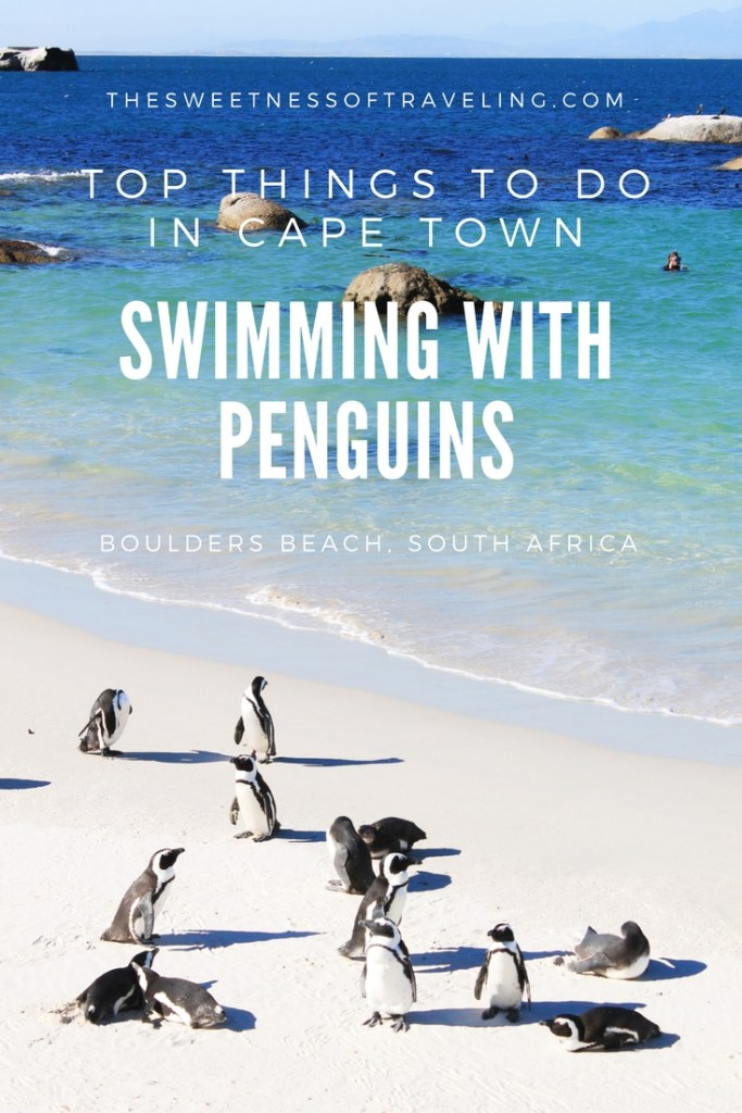 things to do in Cape Town boulders beach