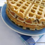 Waffles with Cacao Nibs