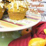 Spiced Pumpkin Muffins with Cranberries