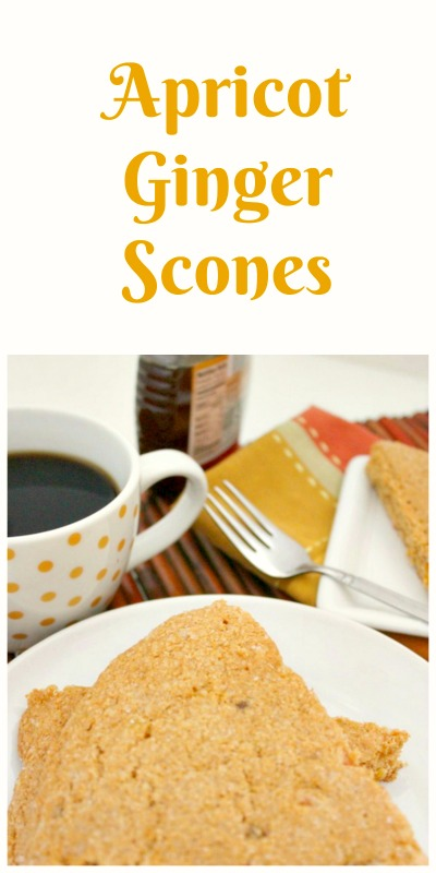 If you're looking for a light and moist scone that won't break your calorie bank these Apricot Ginger Scones fit the bill.