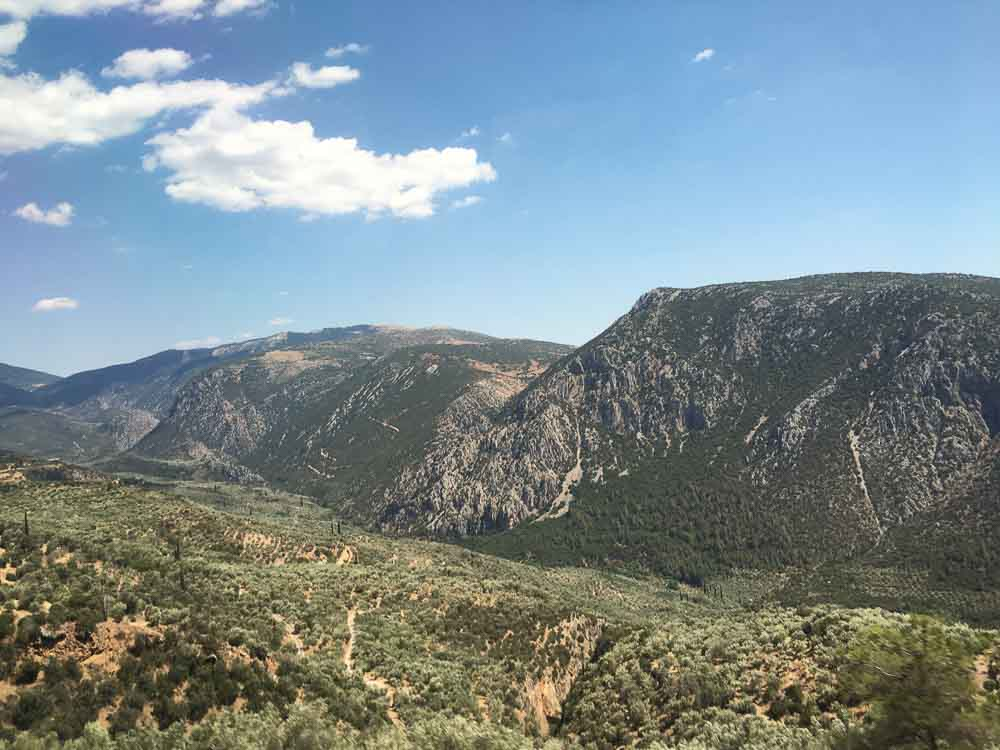 nature on the way to visit delphi greece