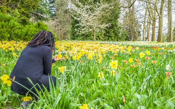 Girl looking at flowers at Mainau Island