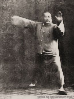 Image result for yang chengfu