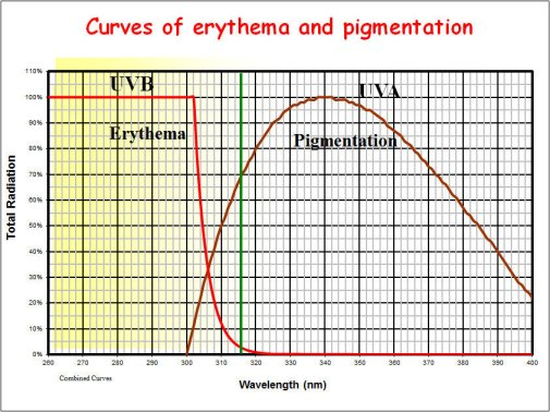 Curves of erythema and pigmentation